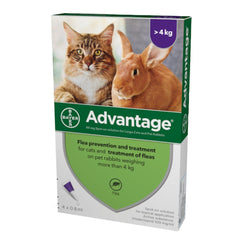 Advantage 80 Flea Treatment >4kg (Large Cat/Rabbit)