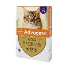 Advocate 80 Large Cat (4kg-8kg)