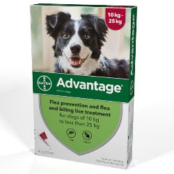 Advantage 250 Flea Treatment 10-25kg (Dogs)