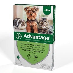 Advantage 40 Flea Treatment <4kg (Small Dog/Cat/Rabbit)