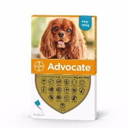 Advocate 100 Medium Dog (4kg-10kg)