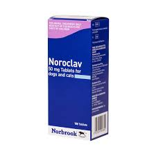 Noroclav Tablets for Dogs & Cats 50mg