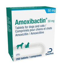 Amoxibactin Tablets for Dogs & Cats 50mg