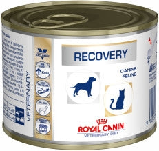 Royal Canin Recovery Canine/Feline Wet Tins