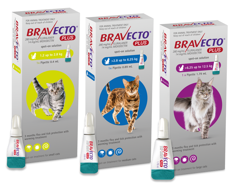 Bravecto Plus Spot On for Cats