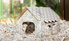 Cardboard Colour-In Small Animal House (Small)