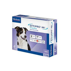 Effipro Duo Medium Dog 10-20kg 4 Pack