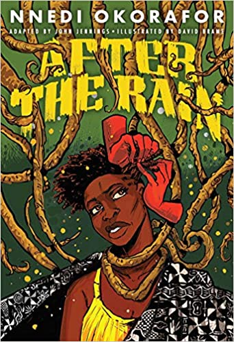 After the Rain - Hardcover