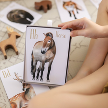 Load image into Gallery viewer, Animal Alphabet Flash Cards