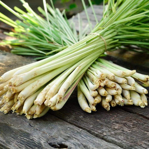 Lemongrass *Essential Oils Only*