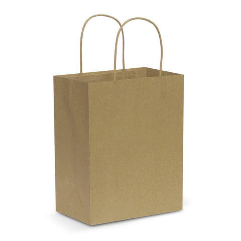 107586 Paper Carry Bag - Medium