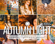 Load image into Gallery viewer, Autumn Light Mobile Preset