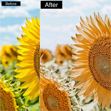 Load image into Gallery viewer, Summer Dream Mobile Presets - 4 Pack