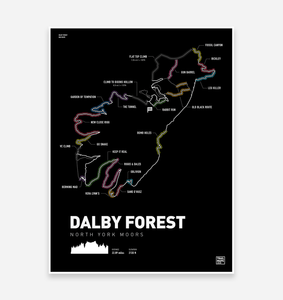 Dalby Forest Art Print