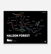 Load image into Gallery viewer, Haldon Forest Art Print - TrailMaps.co.uk