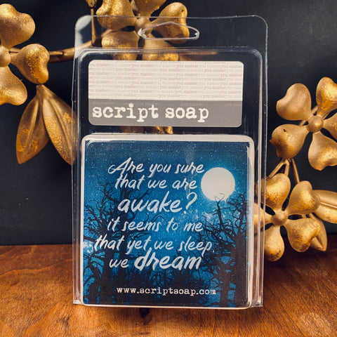 ARE YOU SURE THAT WE ARE AWAKE... Script Soap