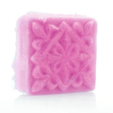 Cranberry + Apple = FTW Hydrate Me! (2 oz.) - Fortune Cookie Soap
