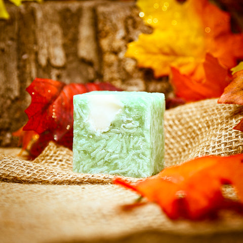 CABIN FEVER Shampoo Bar