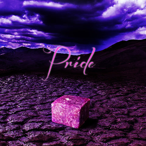 PRIDE Shampoo Bar - Fortune Cookie Soap