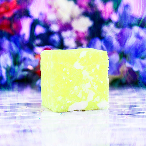 WELL BEGUN IS HALF-DONE Shampoo Bar