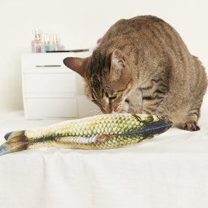 Catnip Fish Toy (2pc)
