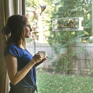 Hangout Window Bird Feeder - Clear Wild Bird Viewing