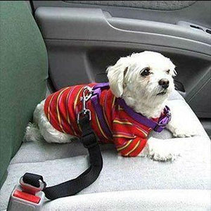 Pet Adjustable Safety Belt (6 Colors Available)