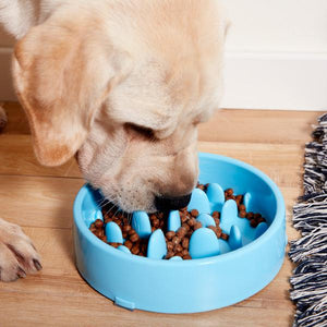 Anti Choke Pet Food Bowl