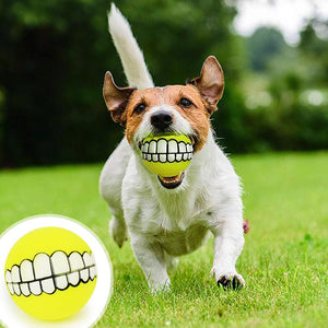 2 Pcs Funny Teeth Pet Toy Ball