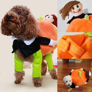 Doggie Carrying Pumpkin Costume