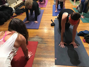 Abhyasa Yoga Institute Yoga Teacher Training