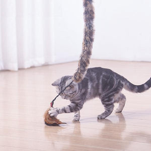 Cat Tease Sticks Toys Jumping Training Wand Cat Catcher