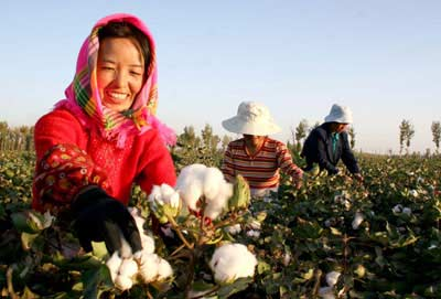 HANDPICKED cotton is better than MACHINE harvested