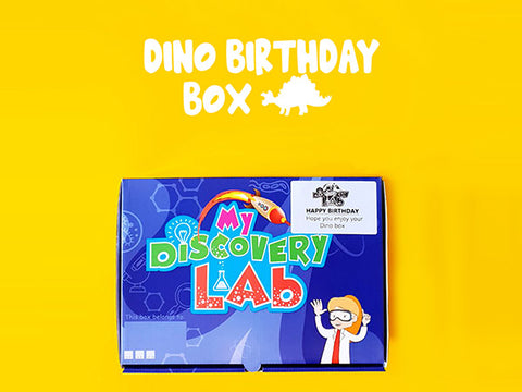 Dinosaur Activity Box
