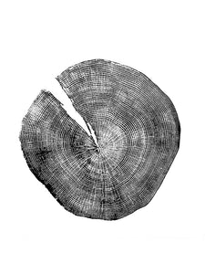 Red Oak Tree Rings Print