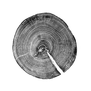 Tree Ring Prints Ottawa