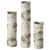 Birch Vase Set (3) - barndoorboutiquetn