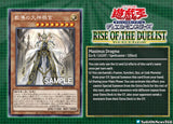 RISE OF THE DUELIST DISPLAY (DE) - NEU & OVP 1. Auflage Sealed - Oricashop