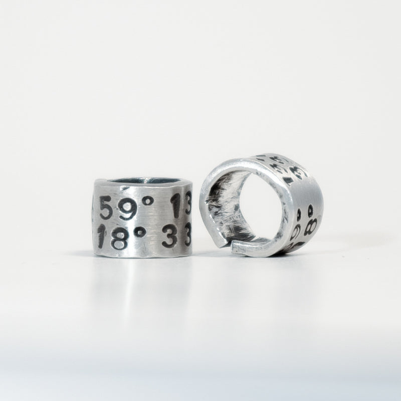 SILVER BIRD RING WITH YOUR UNIQUE COORDINATES