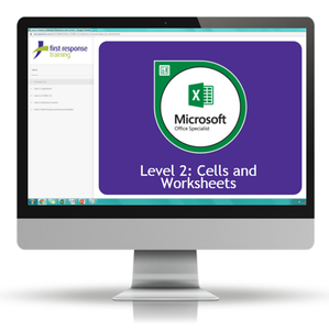 Excel 2019 - Level 2 Cells and Worksheets