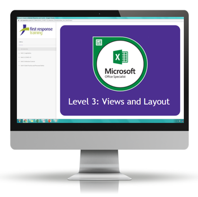 Excel 2019 - Level 3 Views and Layout