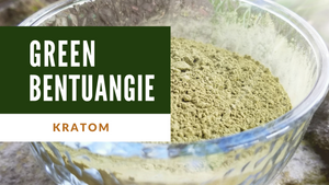 Green Bentuangie Premium Kratom Powder - IncredibleBotanicals-Kratom