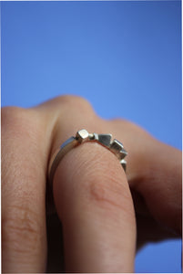 3D Section Ring