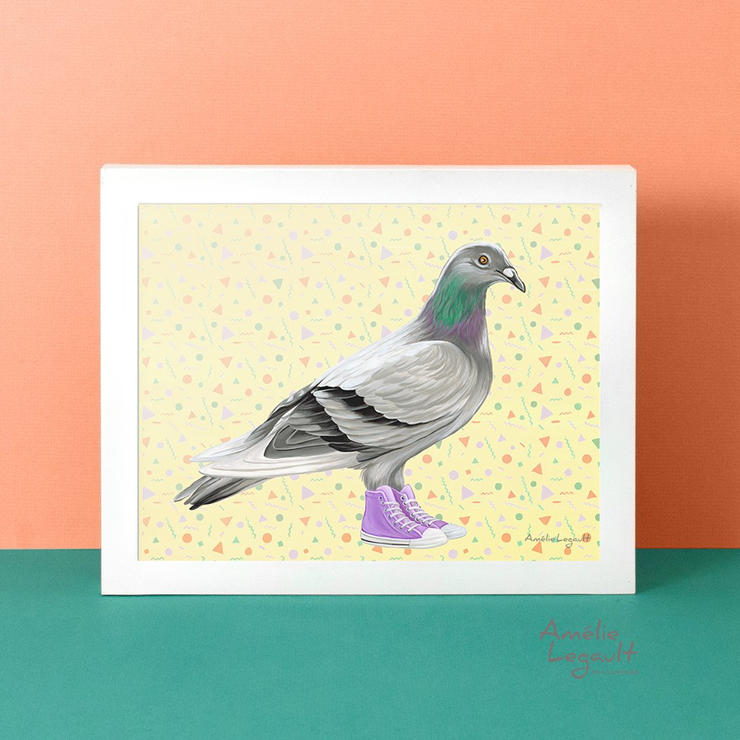 Pigeon illustration, Pigeon painting, Amélie Legault, Montreal animal, converse illustration, converse shoes, converse painting, art print, artwork, canadian artist