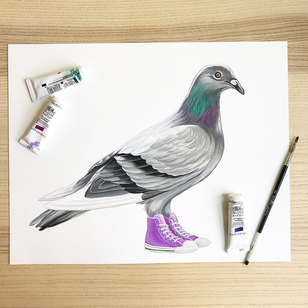 gouache painting, pigeon painting, converse shoes, purple converse, converse painting, amelie legault, made in canada, canadian artist