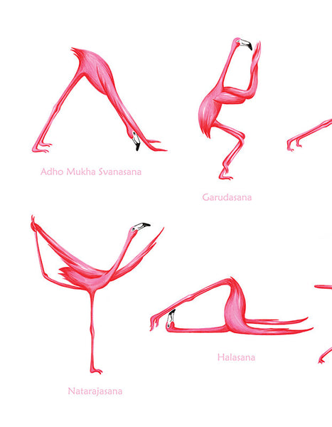 Posture de yoga avec flamants roses