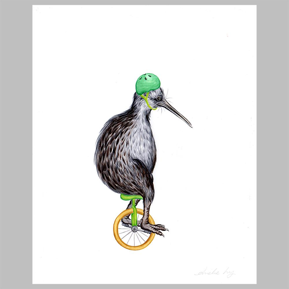 Kiwi bird illustration, original artwork, amelie legault, unicycle, new zealand