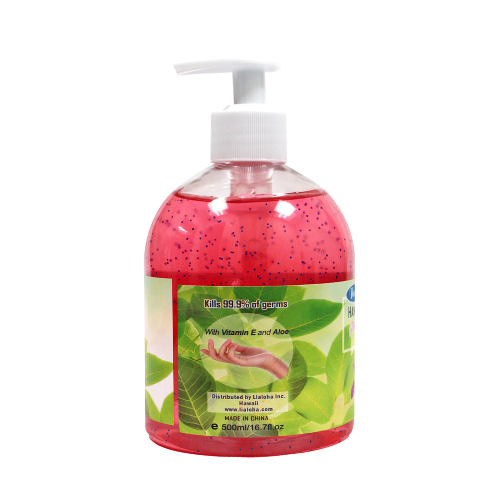 HAND SANITIZER LARGE - 2 SETS