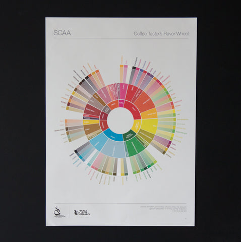 SCAA Flavour Wheel Poster - 1