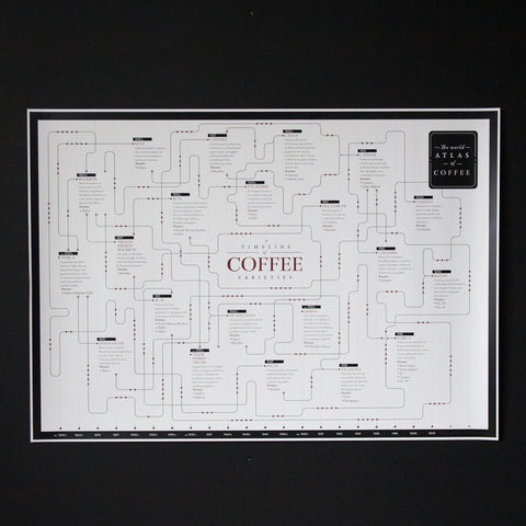 Coffee variety family tree timeline - 1